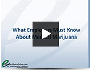 what-employers-must-know-about-medical-marijuana